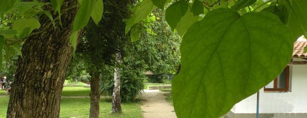 Banja Vrujci priroda i zdravlje